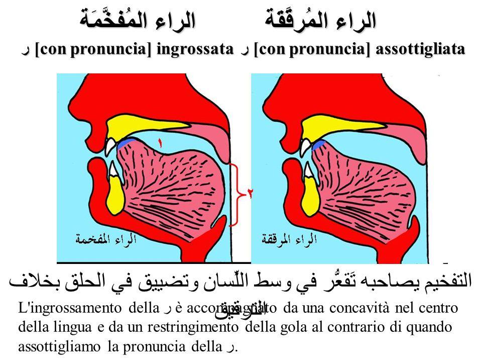 ر [con pronuncia] ingrossata ر [con pronuncia] assottigliata